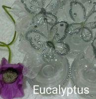EUCALYPTUS DECO
